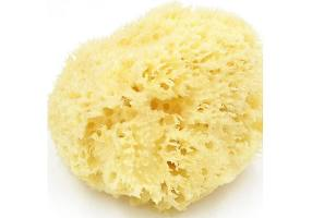 Beauty Spring Sponge Natural Medium, 50gr